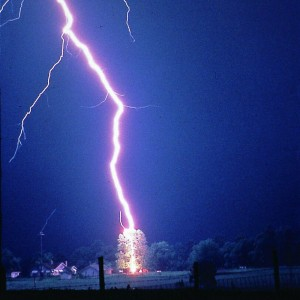 Lightning-hits-tree