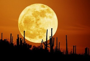 moon_supermoon
